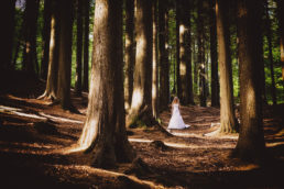 bride in the woods lyrath estate wedding kilkenny