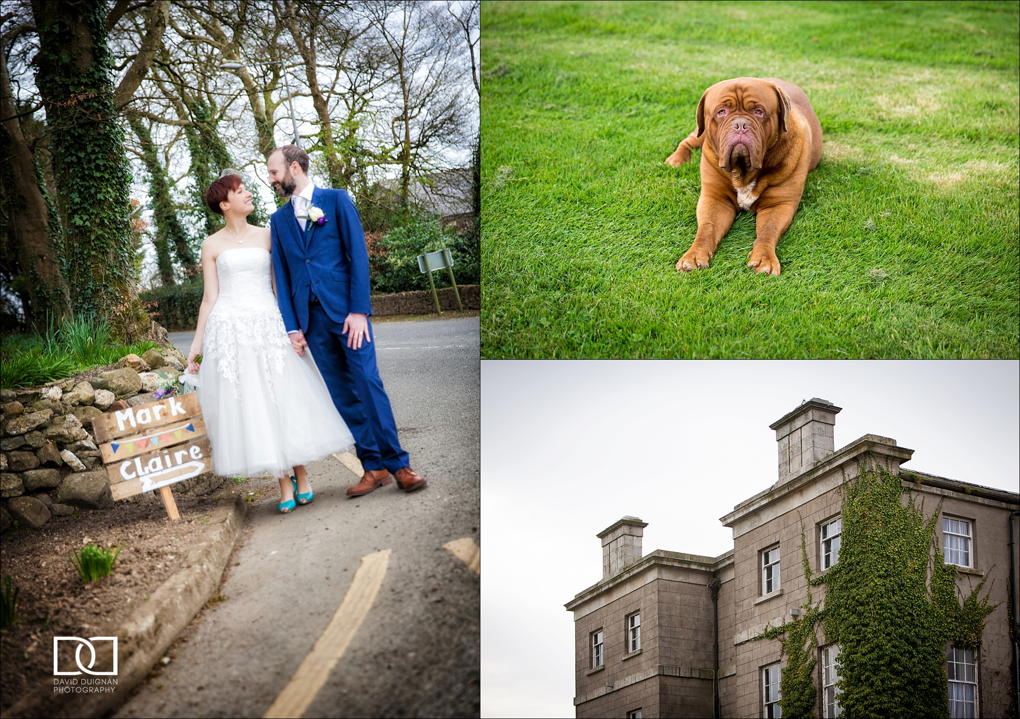 dublin wedding photographer david duignan photography horetown house wedding wexford Ireland 0024