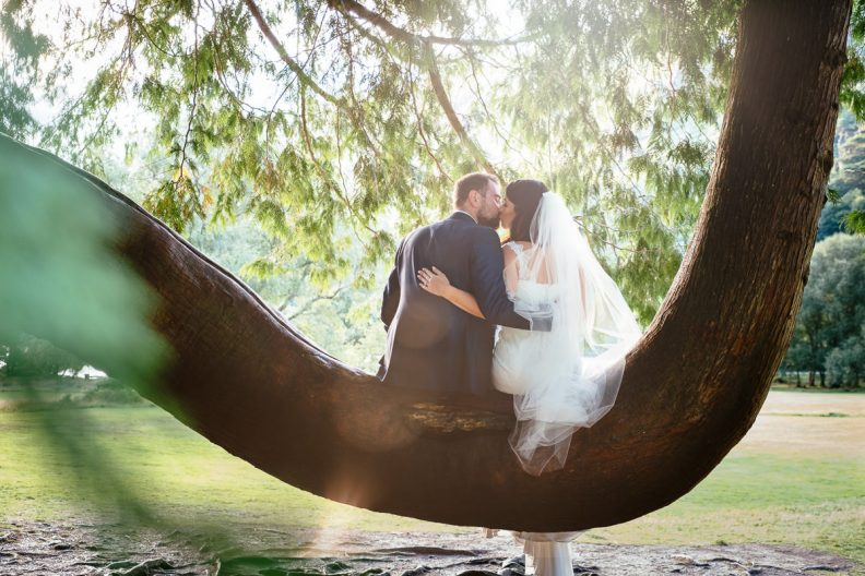 bride and groom sitting on a tree branch