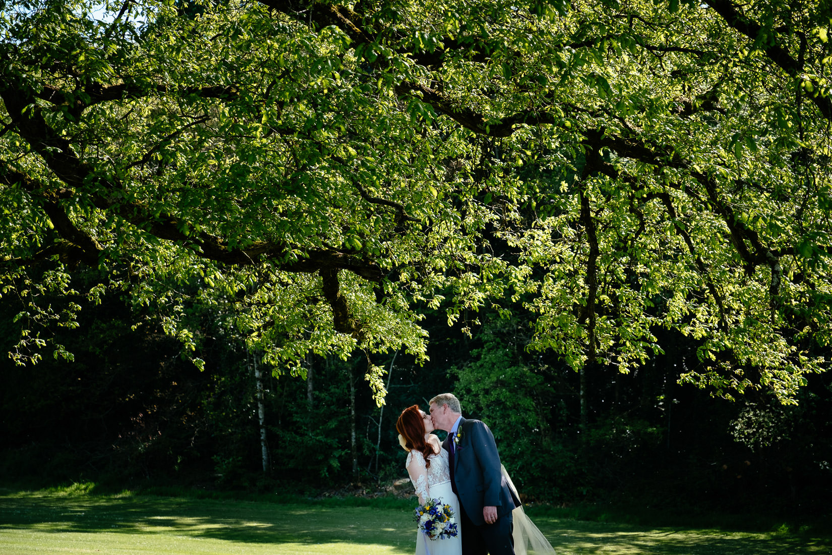 bride and groom kissing under a tree at cabra castle
