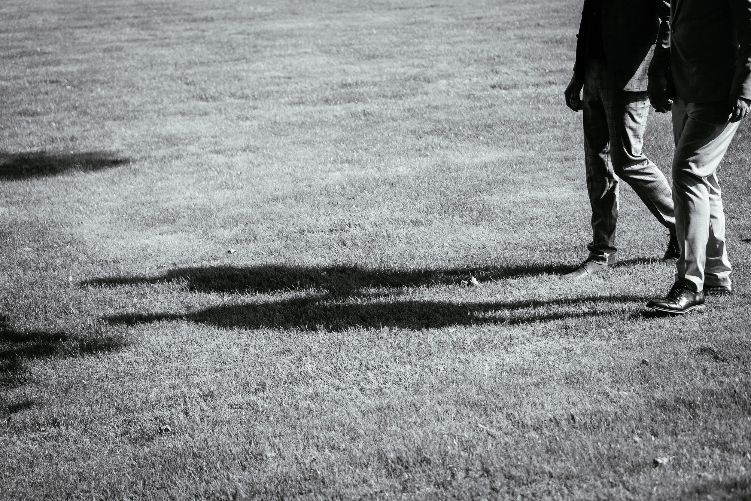 shadows of 2 grooms in grass