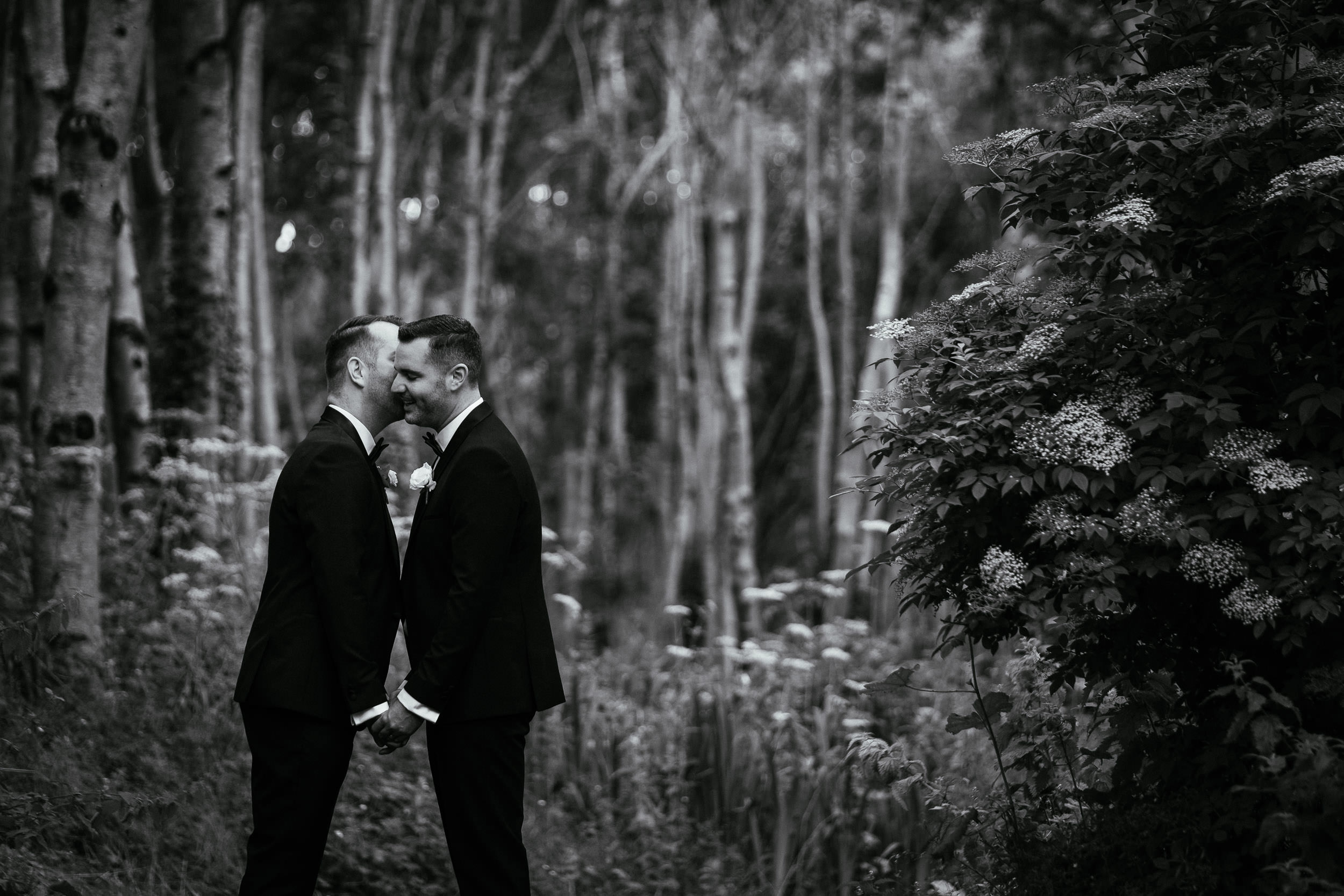 grooms kissing at Johnstown House estate
