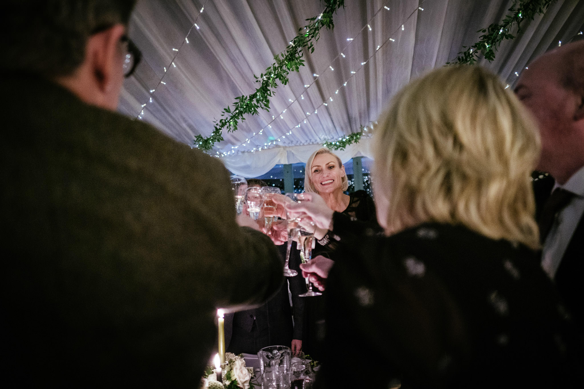 guests toasting during speeches at Virginia Park Lodge wedding